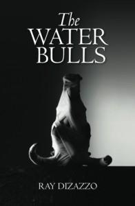 WATER BULLS COVER